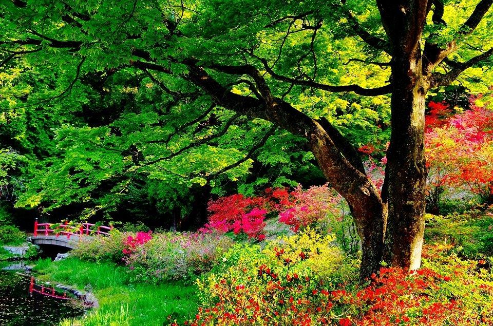 9 công viên tuyệt đẹp trên thế giới