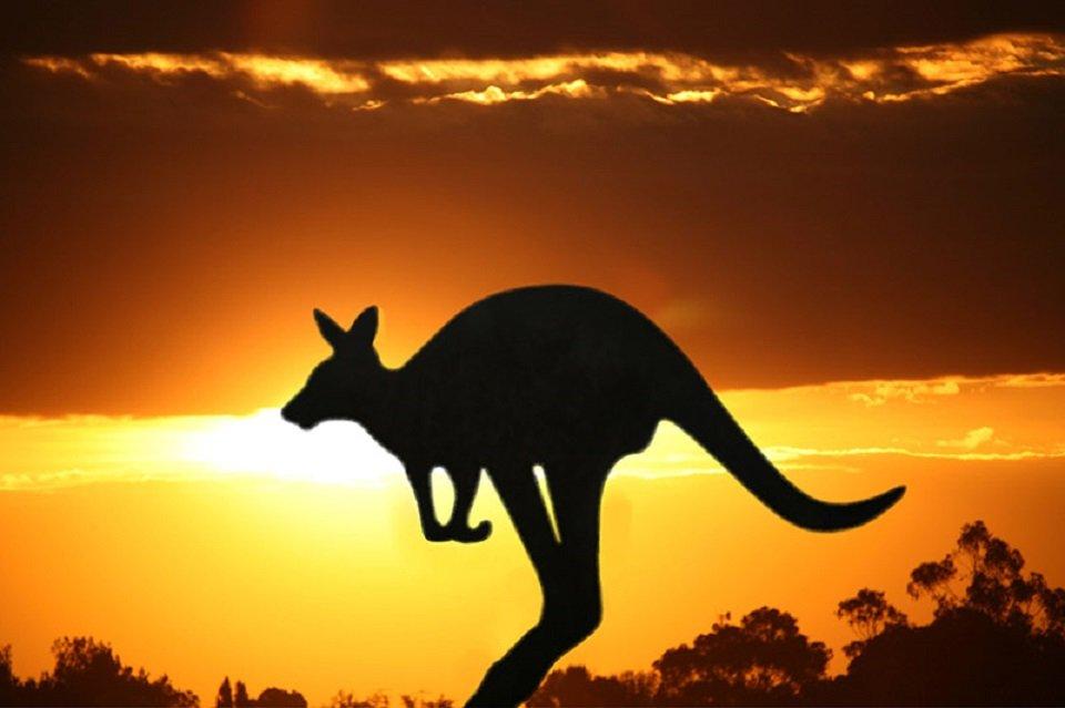 Những điều khiến bạn mất mặt khi đến Australia